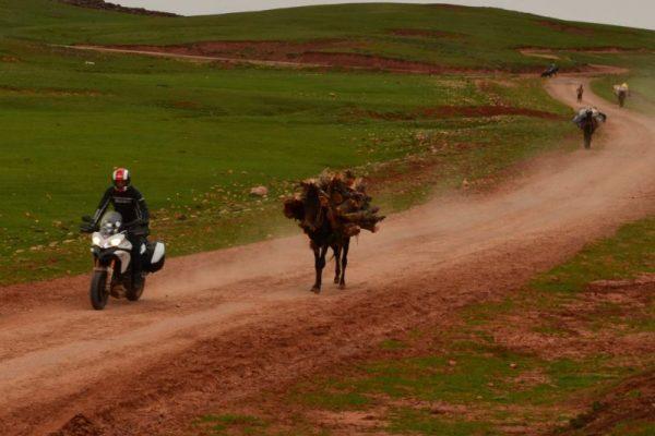 marokko 2015 11